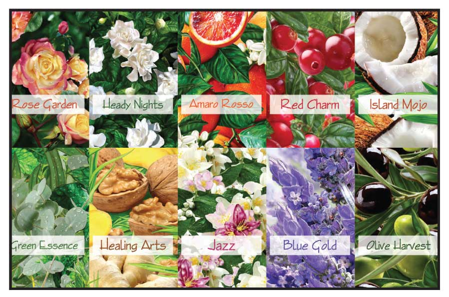 From the exotic scent of spices to the beautiful aroma of blossoming flowers this 10 soap collection will leave you fresh and revitalized. Take on the day with this Fresh Favorites Collection.