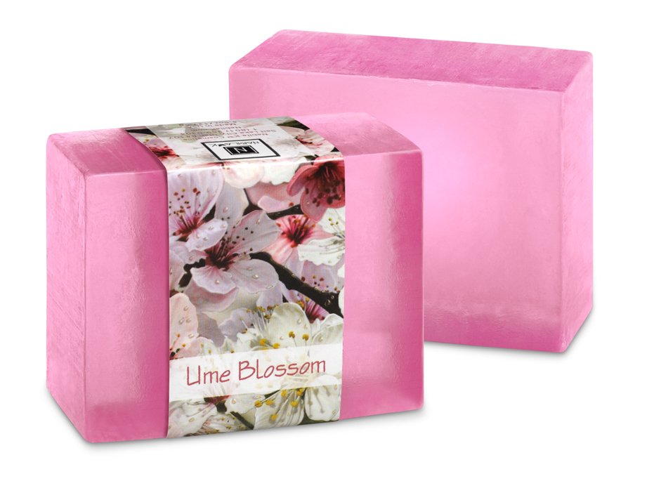 Spicy plum fragrances offer you a unique scent that layers well with other profiles. Easy to create your own signature scent.